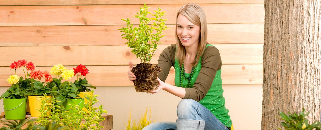 Entreprise de jardinage au luxembourg jardinier paysagiste for Entreprise jardinier paysagiste