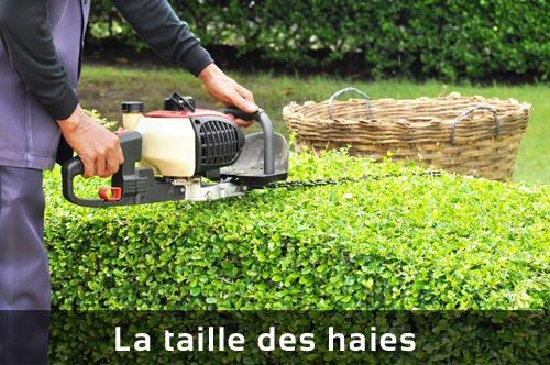 Entreprise jardinage luxembourg