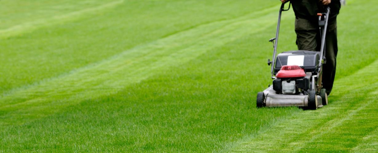 Tonte & entretien de pelouses