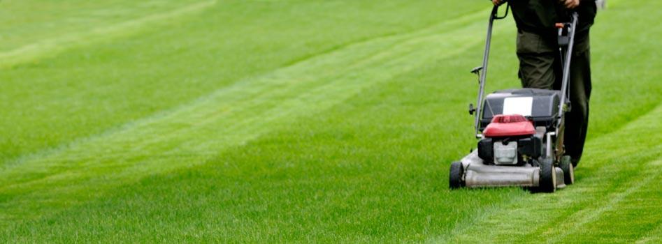 Tonte & entretien de pelouses au Luxembourg